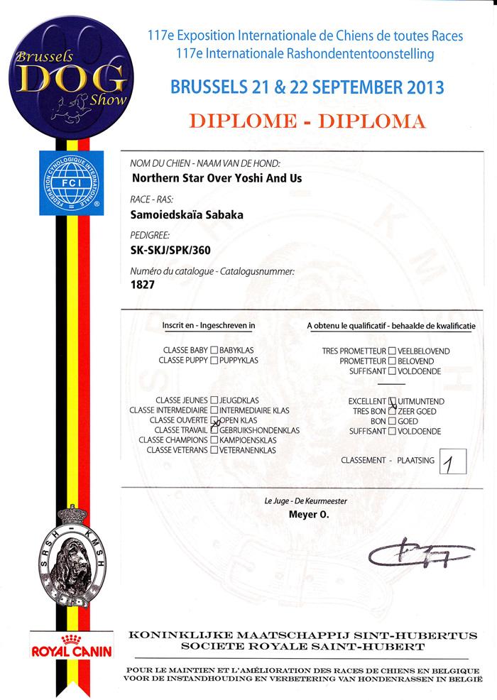 diploma-Northern-starlow